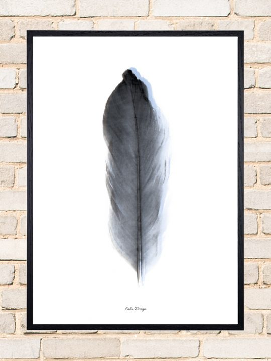 Calm Design Plakat - Feather - sort/blå - A3