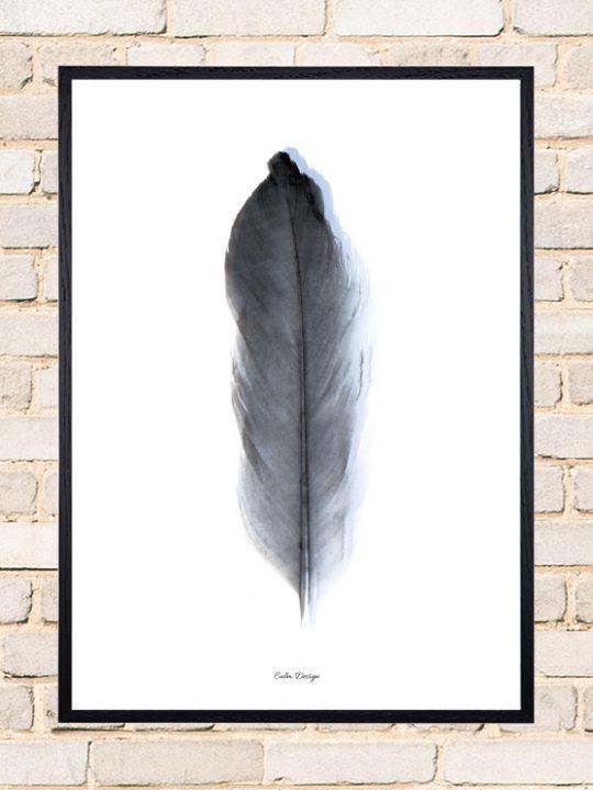 Calm Design Plakat - Feather - sort/blå - A3