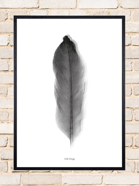 Calm Design Plakat - Feather - sort/hvid - A3