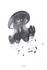 Jellyfish - plakat i A4