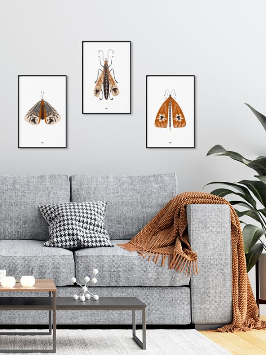Plakat - Elephant-Bug - 1 - Cognac - Calm Design