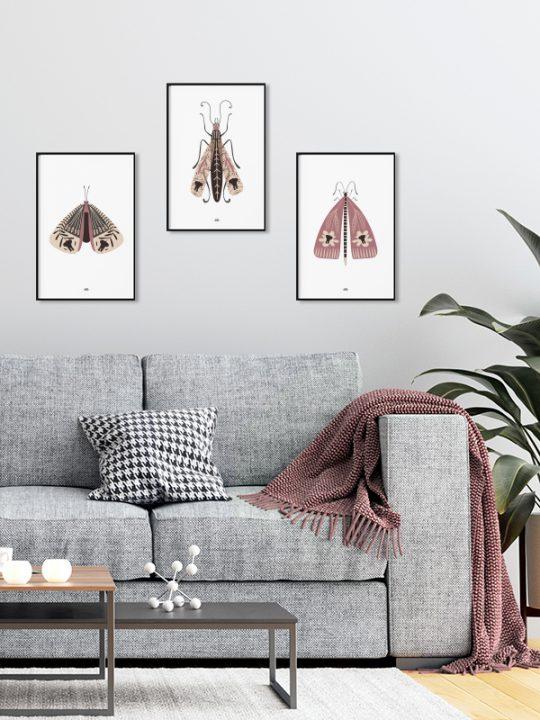 Plakat - Elephant-Bug - 1 - Rosa - Calm Design
