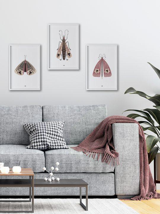 Plakat - Elephant-Bug - 2 - Rosa - Calm Design